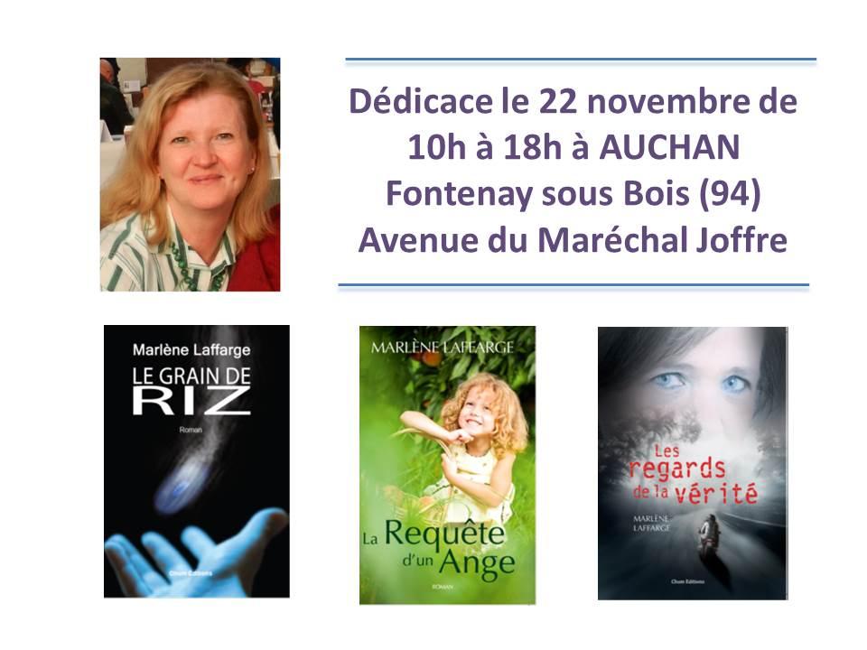 Auchan Fontenay 22 nov 2014