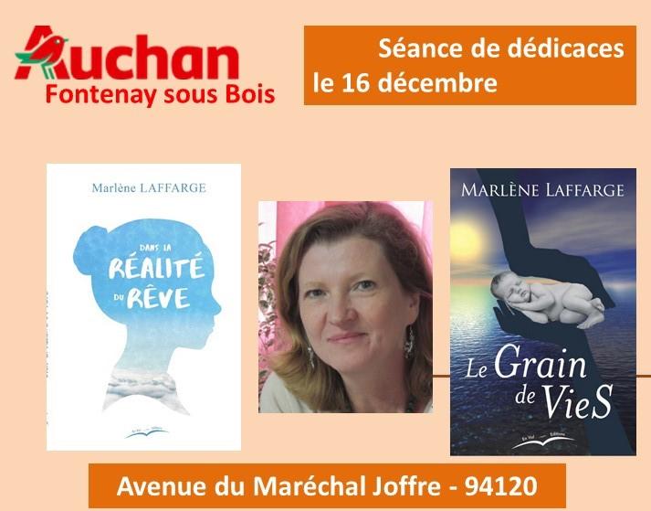 Auchan Fontenay dec 2018
