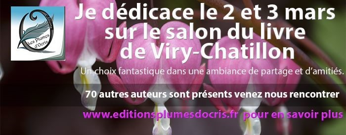 VIRY CHATILLON 2013